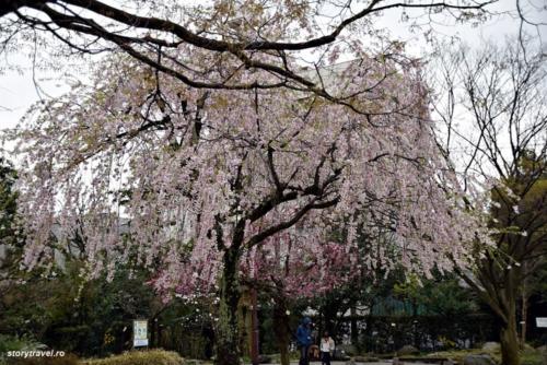 kanazawa 130