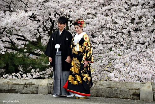kanazawa 48