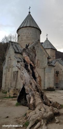 armene 4