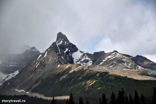 icefield 11