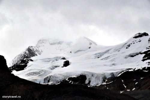 icefield 8