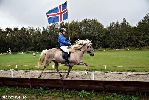 islanda 65