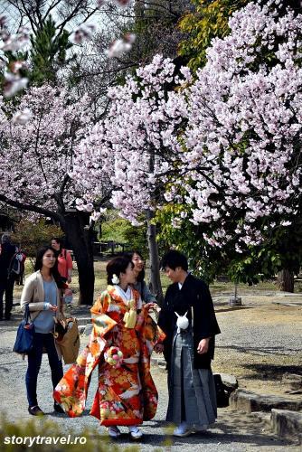 japonia traditionala 15