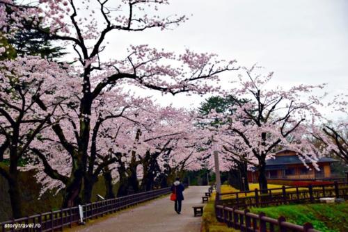 kanazawa 35